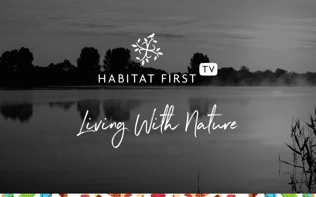 Launching Habitat First Group TV